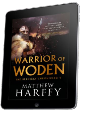 Warrior of Woden Kindle